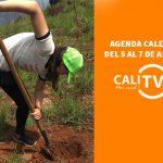 Agenda caleña del 5 al 7 de abril | CANAL CALITV