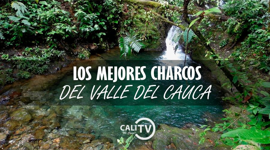 Los mejores charcos - Valle del Cauca